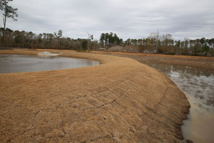 Water Quality Pond Project in Mandeville Area will Have Multiple Benefits